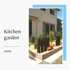 家庭菜園 外構